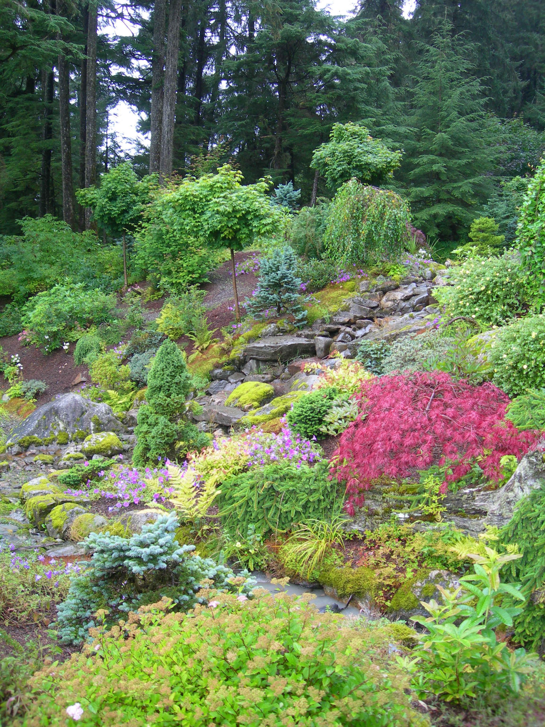 Trädgård 871